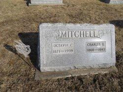 Charles Eli Mitchell