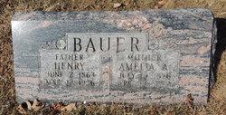Amelia Wilhelmina <I>Abraham</I> Bauer