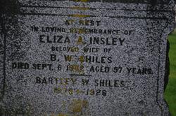 Eliza Ann <I>Insley</I> Shiles