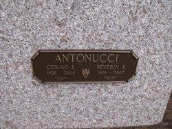 Cosimo J. Antonucci Jr.