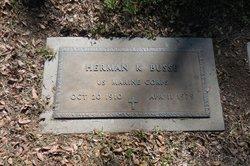 Herman Kenneth Busse
