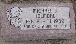 Michael J Holmdal