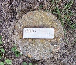 James Bayley