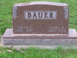 Celia Inez <I>Chalfant</I> Bauer