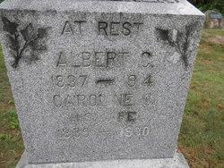 Albert C Waggoner
