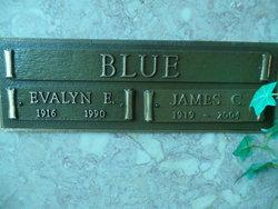 Evalyn E Blue
