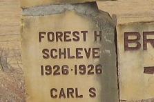 Forrest Herman Schleve