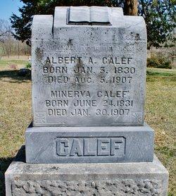 Albert Austin Calef