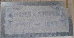 Moses Andrew Striplin