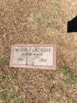 Murray J. Gallagher