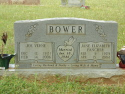 Joe Verne Bower