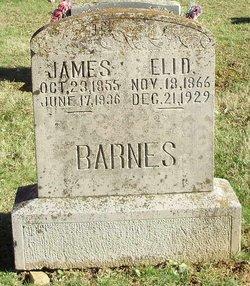 Eli David Barns