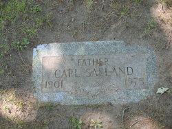Carl John Saeland