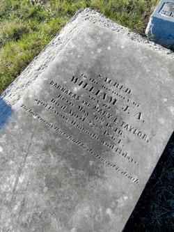 William J. A. Taylor