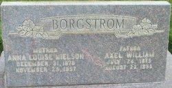 Anna Louisa <I>Nielsen</I> Borgstrom
