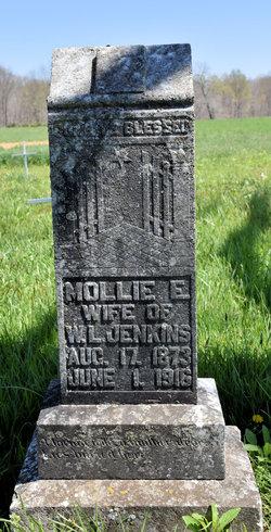 Mollie E <I>Robinson</I> Jenkins