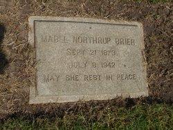 """Anna Mabel """"Mabel"""" <I>Northrup</I> Brier"""