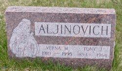 Tony J Aljinovich