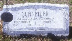 Anita J Schneider