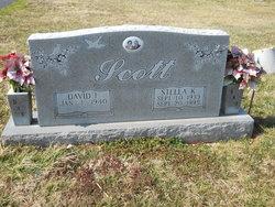 Stella K Scott