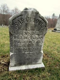 Sarah Louis Hunter