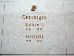 William Vito Caponigro