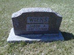 Jacob A. Wiens