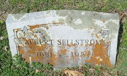 Albert Sellstrom