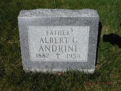 Albert C Andrini