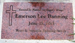 Emerson Lee Banning