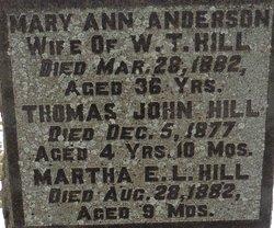 Mary Ann <I>Anderson</I> Hill