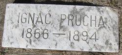 Ignac Prucha