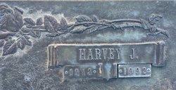 Harvey J Adkinson