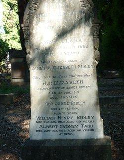 Albert Sydney Tagg