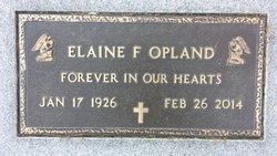 Elaine F Opland
