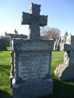 Annie V. O'Neill