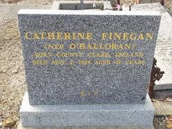 Catherine <I>O'Halloran</I> Finegan