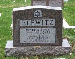 Alik Elewitz