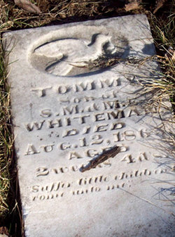 Tommy Whiteman