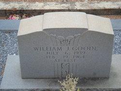 William James Goode