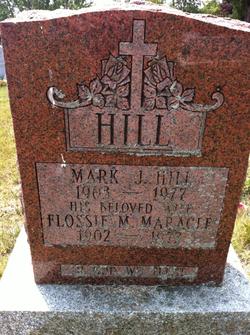 Mark J Hill