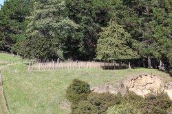 Grant Family Makirikiri Cemetery