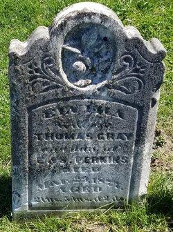 Elvira <I>Perkins</I> Gray