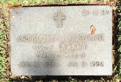 Anthony J Garone