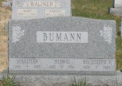 Rev Joseph F. Bumann