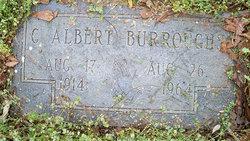 Curtis Albert Burroughs