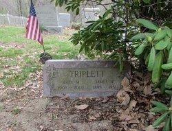 William Triplett