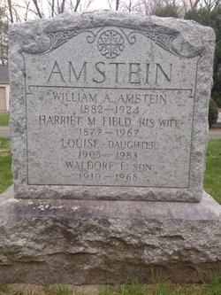 William Adam Amstein