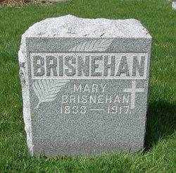 Mary <I>Leary</I> Brisnehan