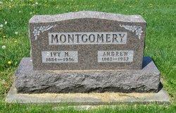 """Phillip Andrew """"Andy"""" Montgomery"""